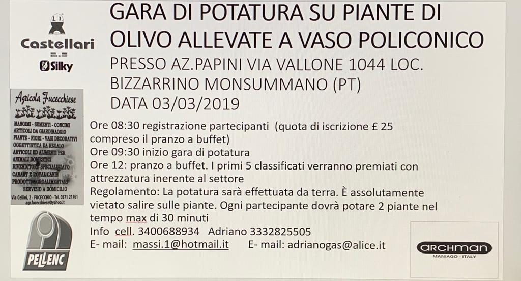 Gara di potatura olivo